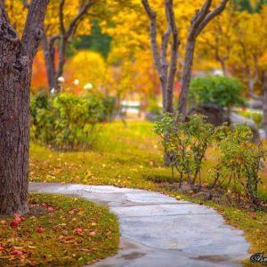 skardu-autumn