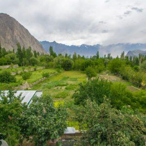 Himalaya Hotel Skardu (13)